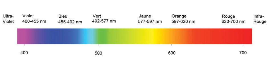 Infrarouge Spectre Lumineux