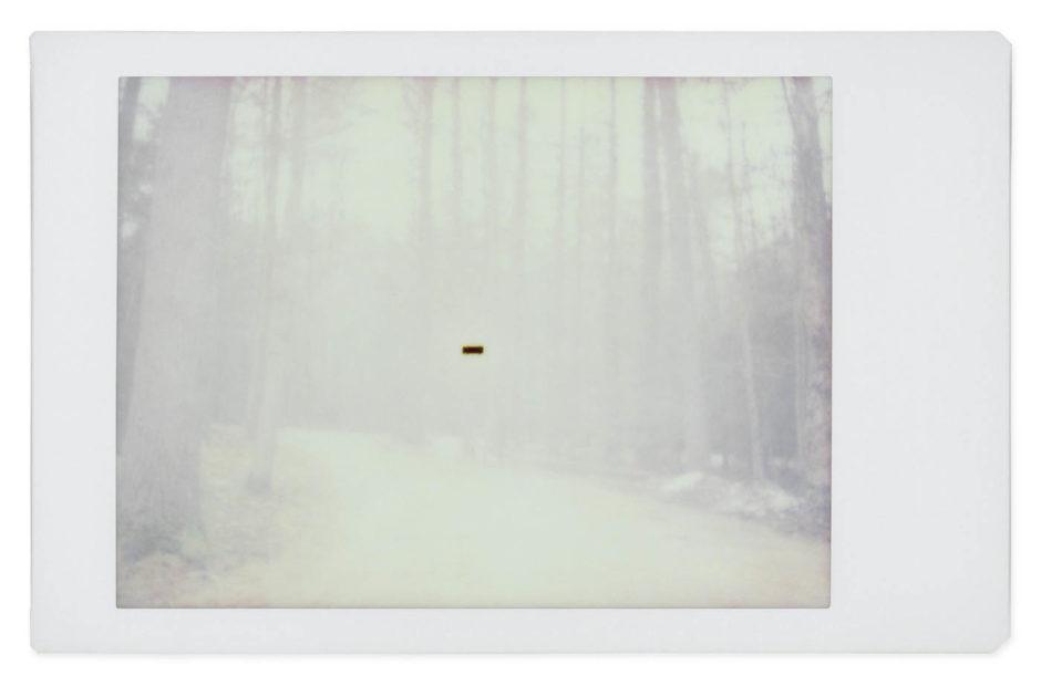 Alien © Gohar Dashti