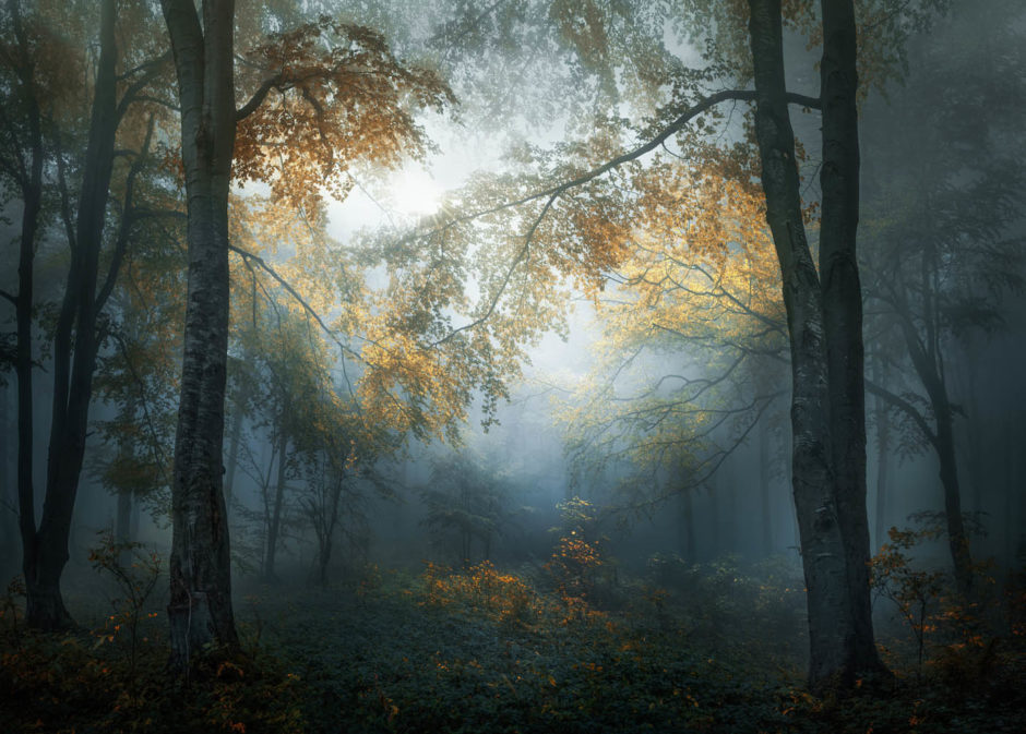 Early autumn © Veselin Atanasov, Winner, Open Landscape & Nature, 2018 Sony World Photography Awards