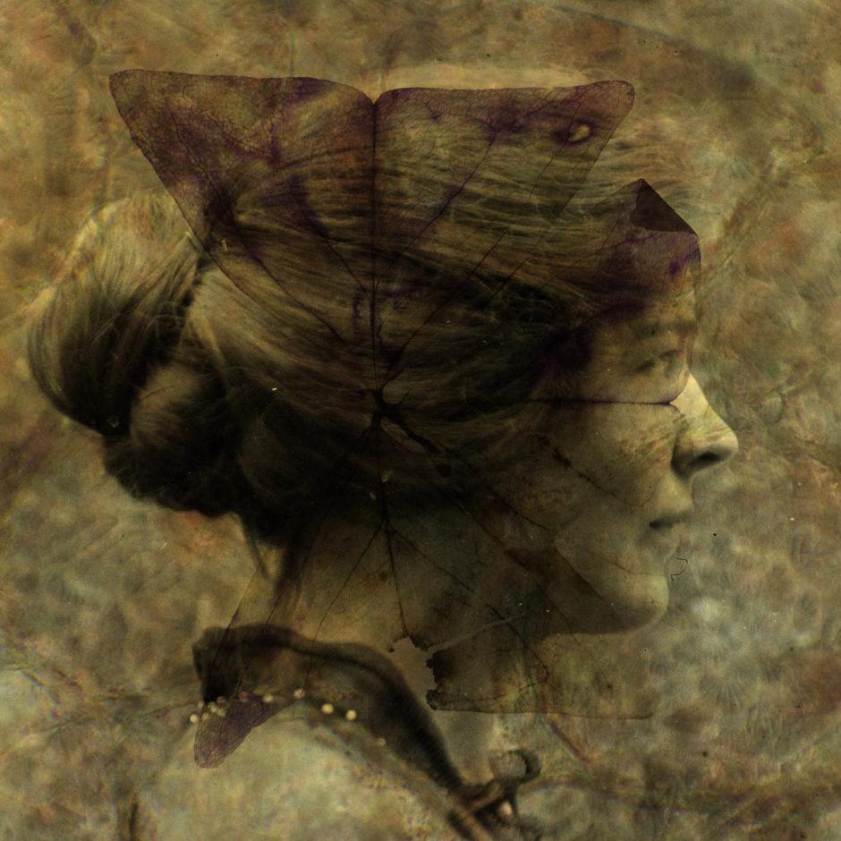 Alessandra Calo Circulation(s)