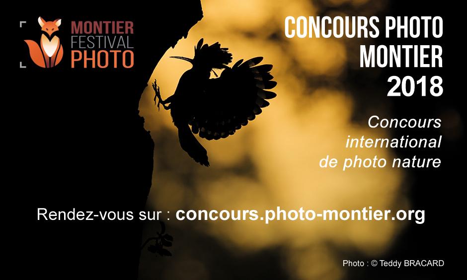 Festival Montier Photo