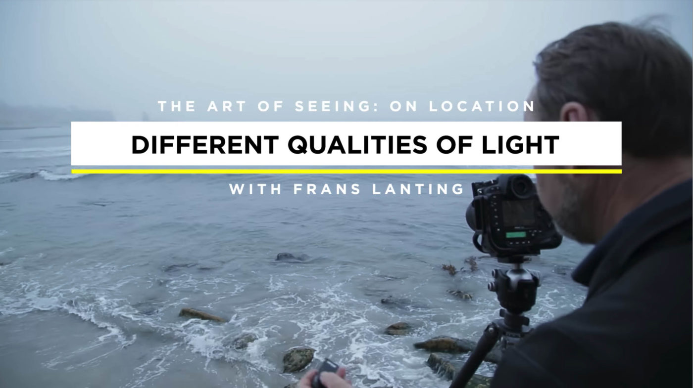 Maitrisez la lumière du soleil avec les astuces de Frans Lanting