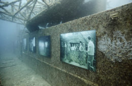 The Sinking World © Andreas Franke