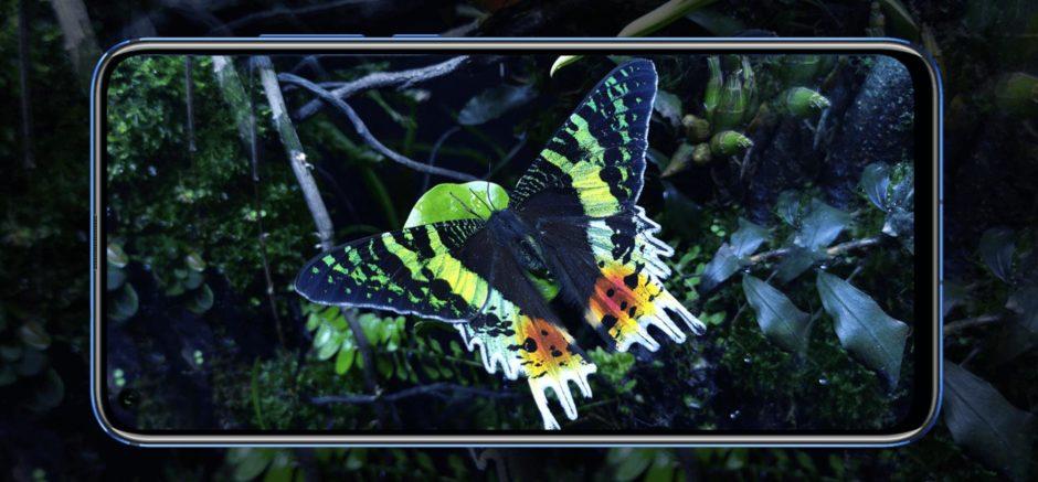 Honor View 20 Visuel Papillon