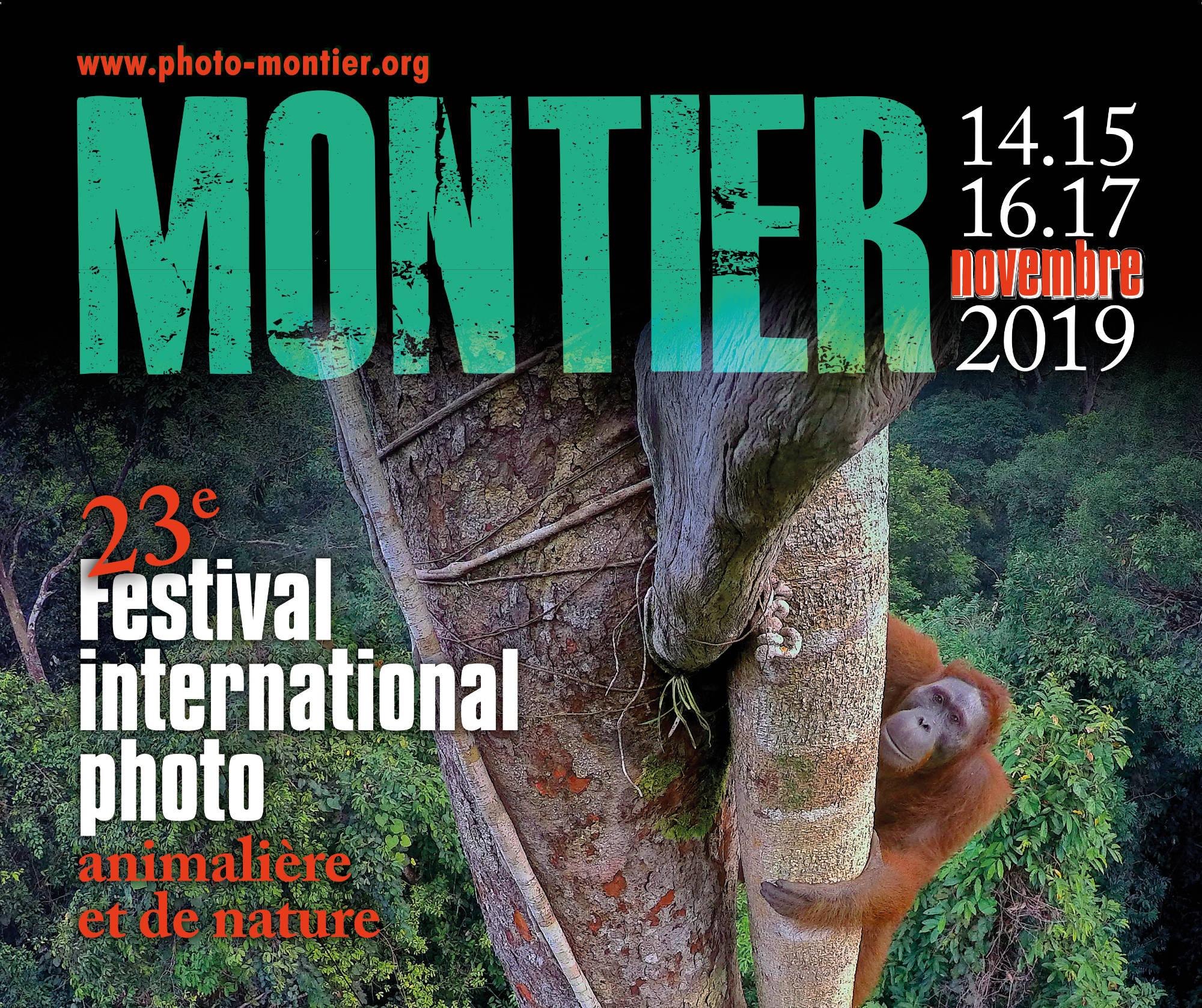 23ème édition du Festival Montier en Der : Le rendez-vous incontournable de la photographie animalière et de nature