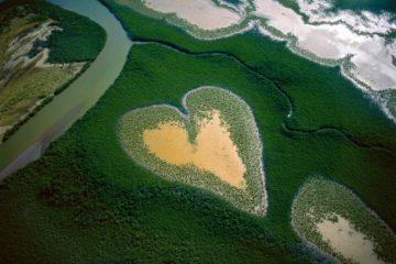 Le dessous des images Cœur de Voh la Terre vue du ciel Yann Arthus Bertrand