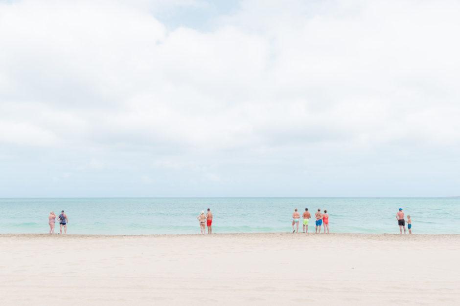 Turtle watch by Sigrid Claeys, CEWE Photo Award, Category winner Travel & Culture